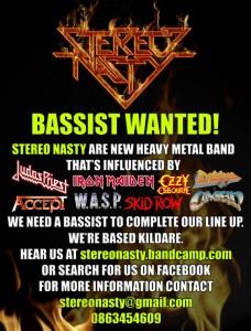 Stereo Nasty seek Bassist